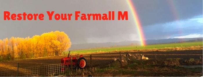 Shop Farmall M Parts
